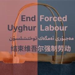 End Uyghur forced labor multilingual