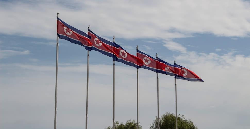 North Korean flags