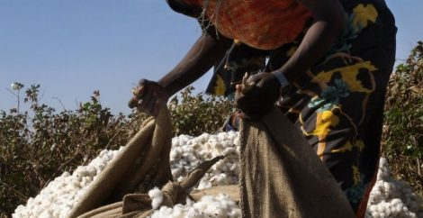 Success! Sudan ratifies ILO Forced Labor Convention
