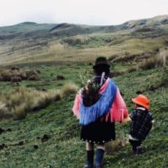 Indigenous peoples and the anti-trafficking sector's blind spot